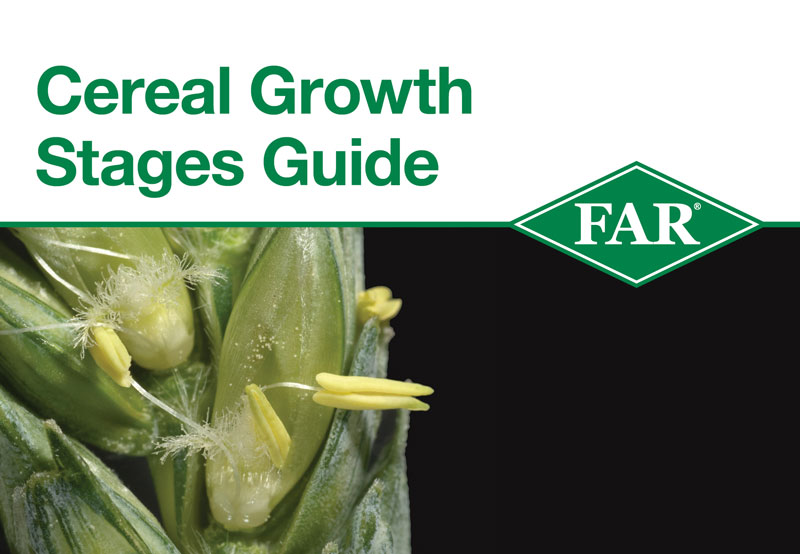 FAR-guide-cereal-growth-stages-cover1